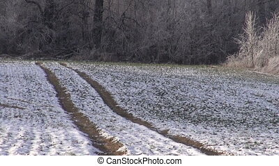 Tractor tracks through snowy field - Tractor tracks through...
