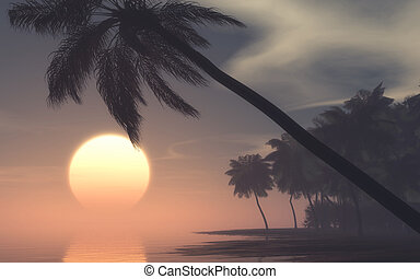 Sunset on tropical island - Sunset on foggy morning at the...