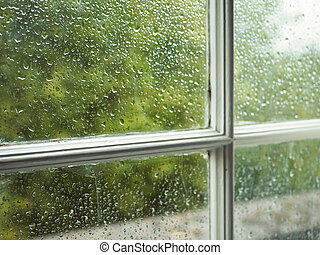 Wet window pane with rain water droplets and greenery...