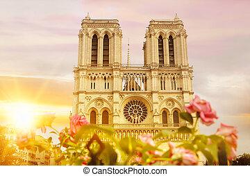 Notre Dame de Paris cathedral. - Notre Dame de Paris...
