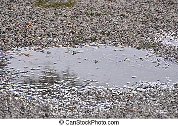 Puddle of water and raindrops - Photo Picture Puddle of...