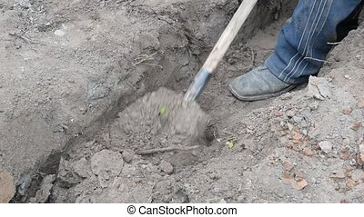 Digging a trench in grey dry soil with a spade - Closeup of...