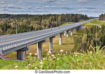 Steel girder bridge viaduct on freeway that crosses woods,...
