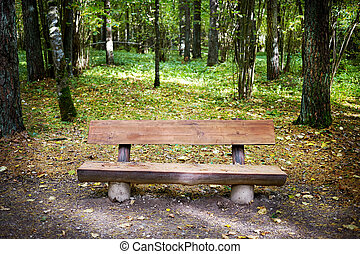 old wooden bench in a park