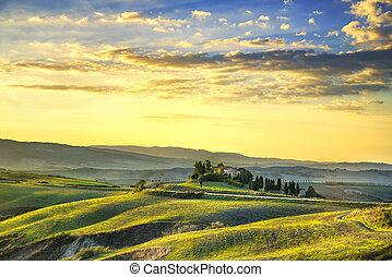 Tuscany Maremma sunset. Trees, farmlands, hills and fields....