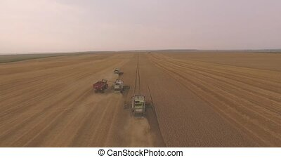 Three Combines Harvest Leaving One by One - Aerial shot....