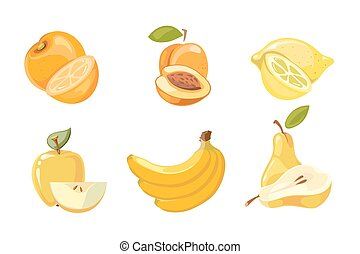 Vector yellow fruits collection isolated over white