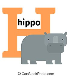 English animals zoo alphabet letter H