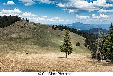 Great Fatra mountain range, Slovakia - Great fatra mountain...