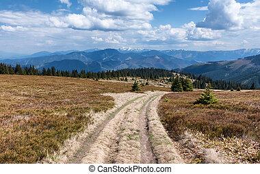 Janosikova kolaren - national reservation, Slovakia -...