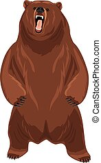Grizzly bear. Vector illustration