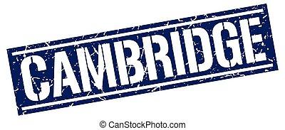 Cambridge blue square stamp