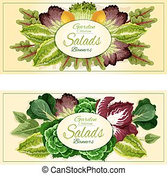 Fresh leaf vegetables and salad greens banners set - Fresh...