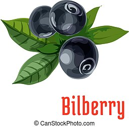 Blue bilberry fruit with green leaves cartoon icon -...