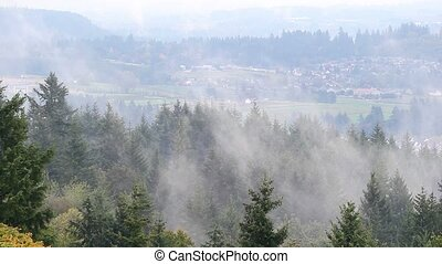 Rolling fog over Happy Valley OR - High definition movie of...