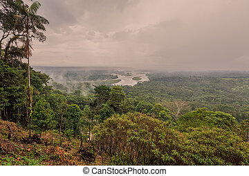 Ecuadorian Part Of The Amazonian Basin, Ecuador, South...