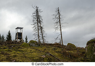 Hunting tower on a forest hill - Hunting tower at a hill in...