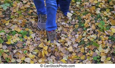a children on a walk in the park on autumn foliage