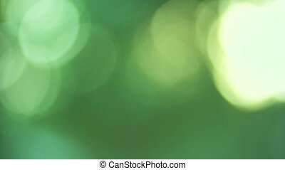 grapes and blured background - grapes and green blured...