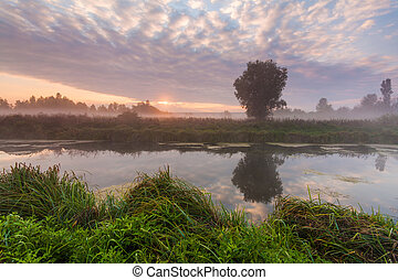 Morning mist over a small river at dawn sky background
