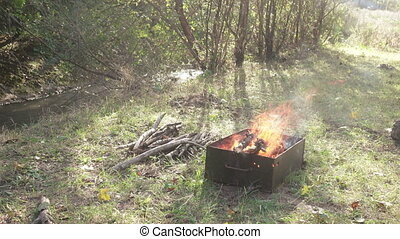 Barbecue in the forest - Barbecue barbecue with on...