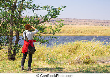 Tourist watching wildlife by binocular on Chobe River,...