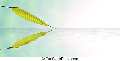 Bamboo leaves and water reflection