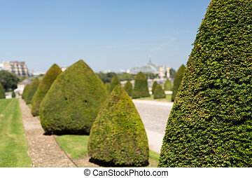 Invalides Garden - The beautiful gardens of invalides in...