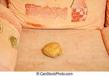 Couch potato - Literla shot of the saying couch potato