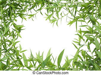 Jungle frame - Jungle from green plants concept Isolated on...