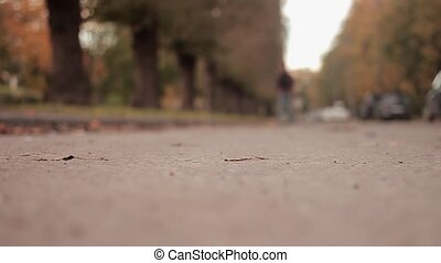 Man pushing a skateboard on asphalt road low angle shot skater moves toward the camera and stops slow motion