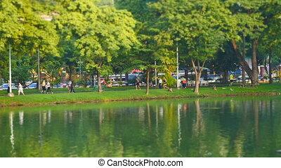 Morning scene in Lumpini Park, Bangkok