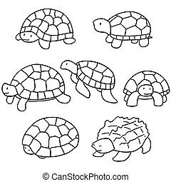 vector set of turtle