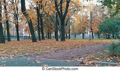 Skater with paper cup walking in the autumn park stands on skateboard and continue pushing 4k