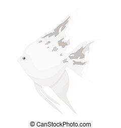 Angelfish common fish icon monochrome. Singe aquarium fish...