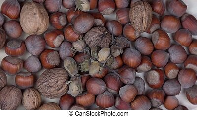 hazelnuts and walnuts dry nuts food. turntable - hazelnuts...