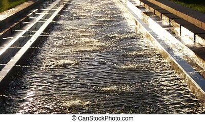 Modern fountain working in sunset time city park