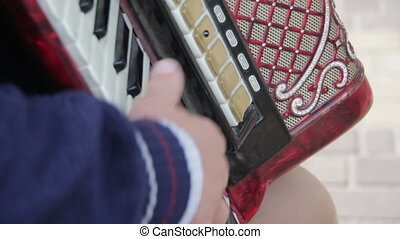 Piano Accordion Musician - The Musician Plays the Accordion....