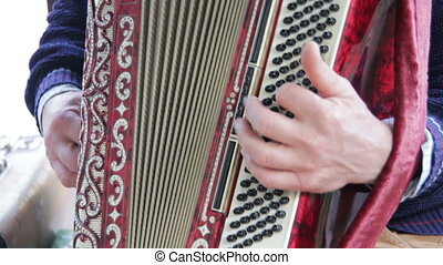 The Musician Plays the Accordion. Human hand playing the...