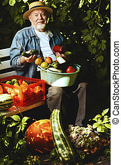 old man in a garden - Happy senior man with great harvest in...