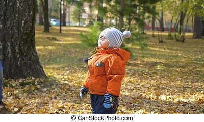 children play with fallen leaves in the autumn Park