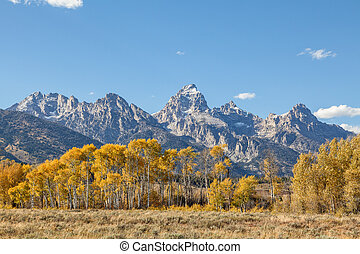 Fall Landscape in the Tetons - a scenic fall landscape in...