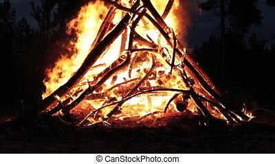 Campfire in the Night. Campfire of the Branches Burn at...