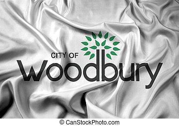 Waving Flag of Woodbury, Minnesota, USA