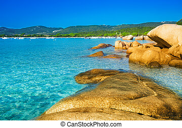 Santa Giulia beach with azure clear water, Corsica, France -...