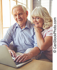 Beautiful old couple is using a laptop and smiling while...