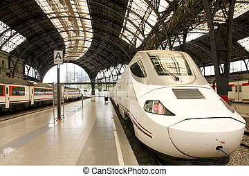 High speed train TGV - Alvia train in France station,...