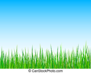 Seamless grass on a blue sky background
