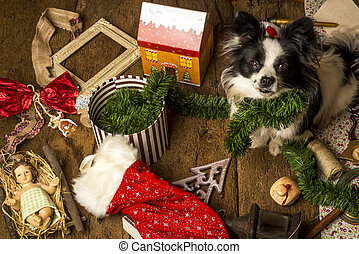 Dog Christmas cards, naughty puppy playing with the...