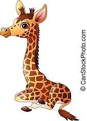 Little giraffe calf sitting
